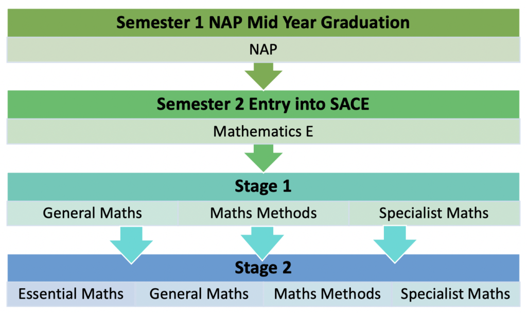 Demonstration of possible pathways from NAP to Stage 2